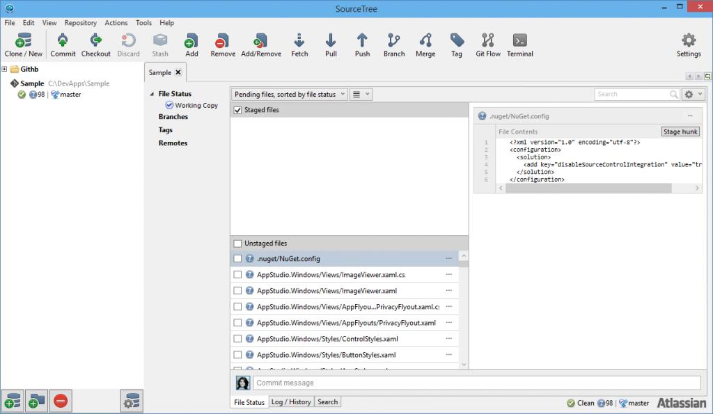 Source Tree: novos ficheiros